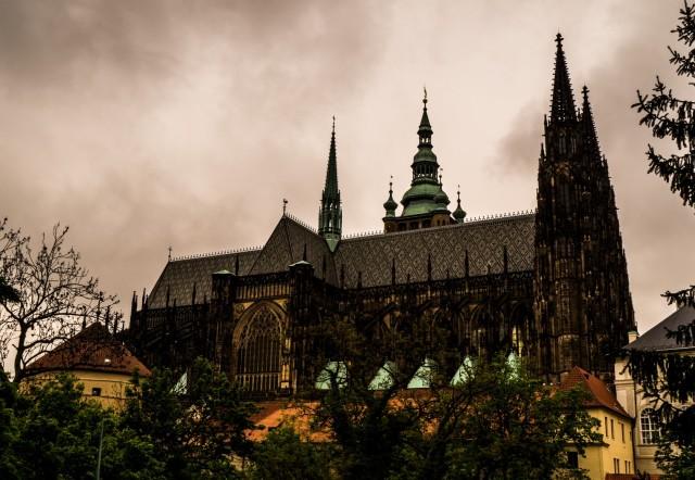 katedra św wita