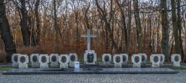 gdansk-131 (Kopiowanie)