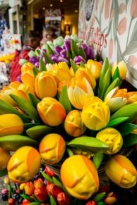 amsterdam kwiecień -7 (Kopiowanie)