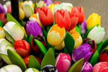 amsterdam kwiecień -8 (Kopiowanie)
