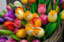 amsterdam kwiecień -9 (Kopiowanie)