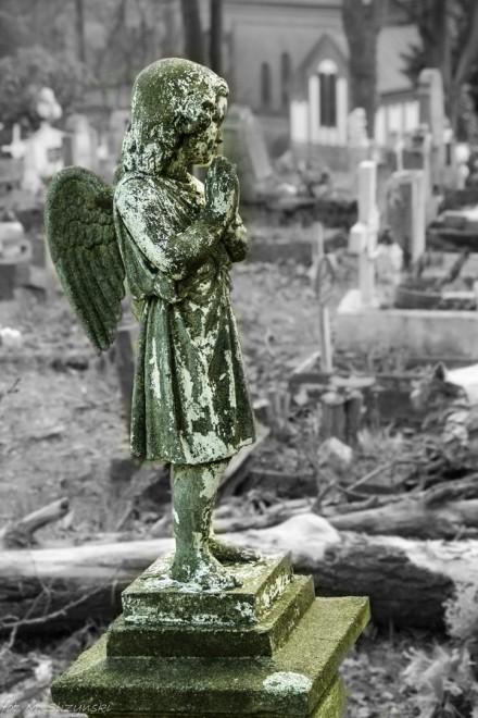 cmentarz-1 (Kopiowanie)