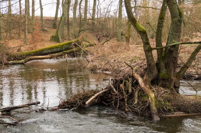 rzeka-1 (Kopiowanie)