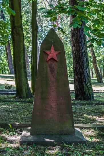 zołnierzy radzieckich-1 (Kopiowanie)
