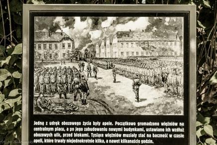 oświęcim-34 (Kopiowanie)