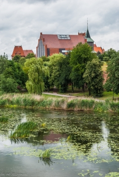 Malbork - widok na Zamek
