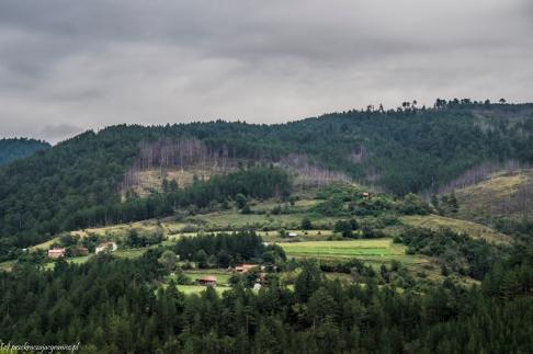 Klasztor Studenica - widoki