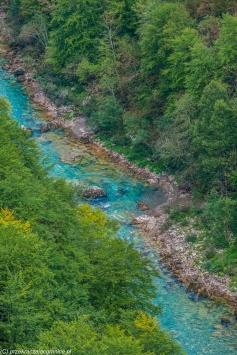 Kanion rzeki Tary