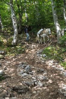 Góry Durmitor - transport puszek z piwem