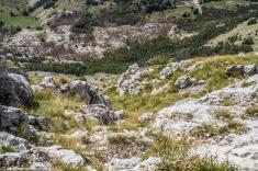 Jezerski Vrh - na szczycie, widoki