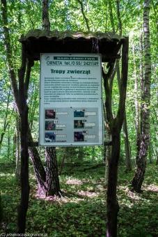 Rezerwat Dolina Wałszy