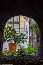 Palermo - widok na podwórko