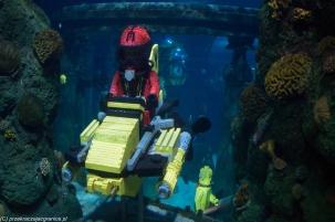 Legoland - świat od strony nurka