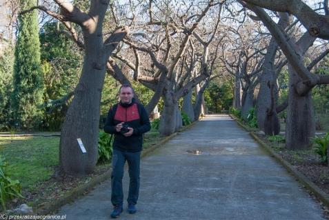 Palermo - można chodzić i chodzić