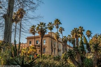 Palermo - widok z Ogrodu Botanicznego