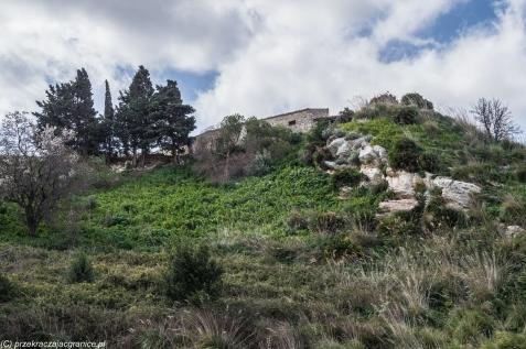 Segesta - gdzie nie spojrzeć ruiny antycznych budowli