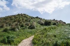 Segesta - ścieżka na szczyt