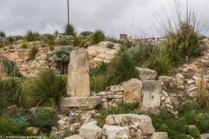 Segesta - ruiny potrafią zachwycać i przerażać